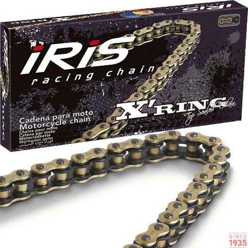 Iris-Racing-Chains-X-ring-Gold---Black